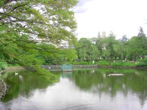 鹿沼公園の湖